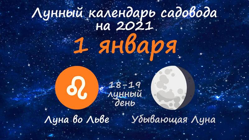 Лунный календарь садовода-огородника на 1 января 2021 года