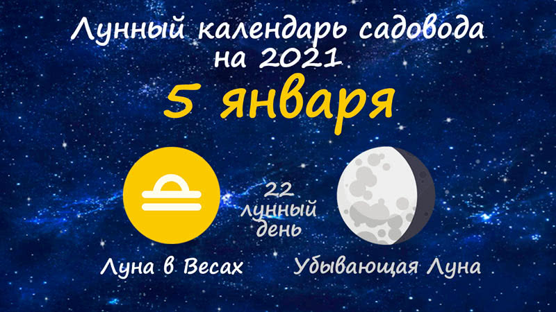Лунный календарь садовода-огородника на 5 января 2021 года
