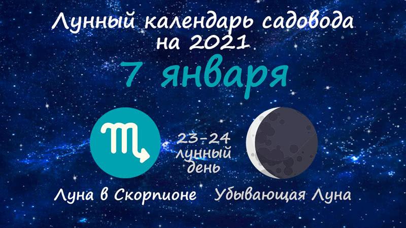 Лунный календарь садовода-огородника на 7 января 2021 года
