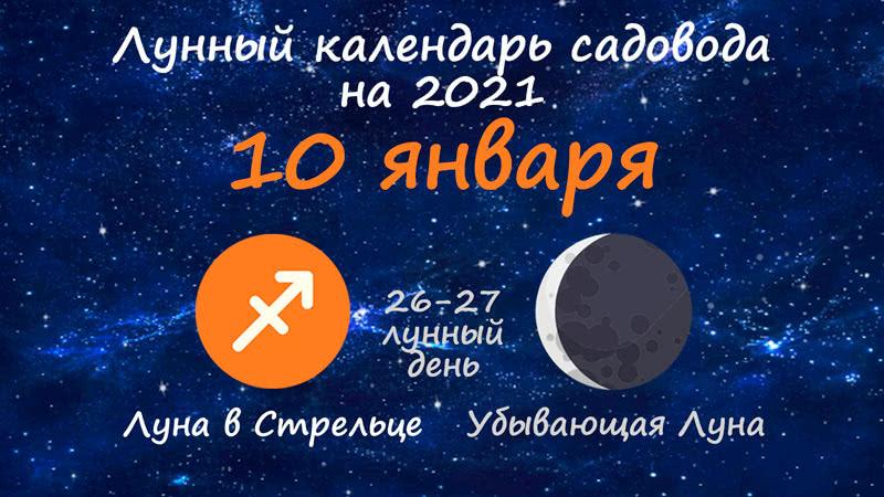 Лунный календарь садовода-огородника на 10 января 2021 года