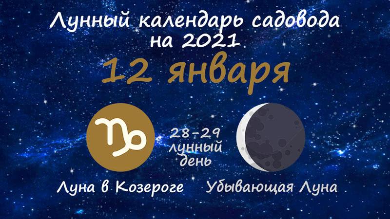 Лунный календарь садовода-огородника на 12 января 2021 года