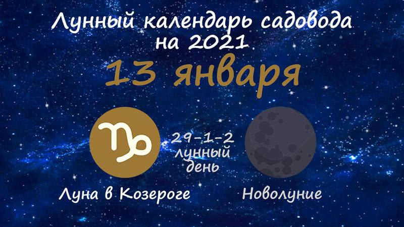 Лунный календарь садовода-огородника на 13 января 2021 года