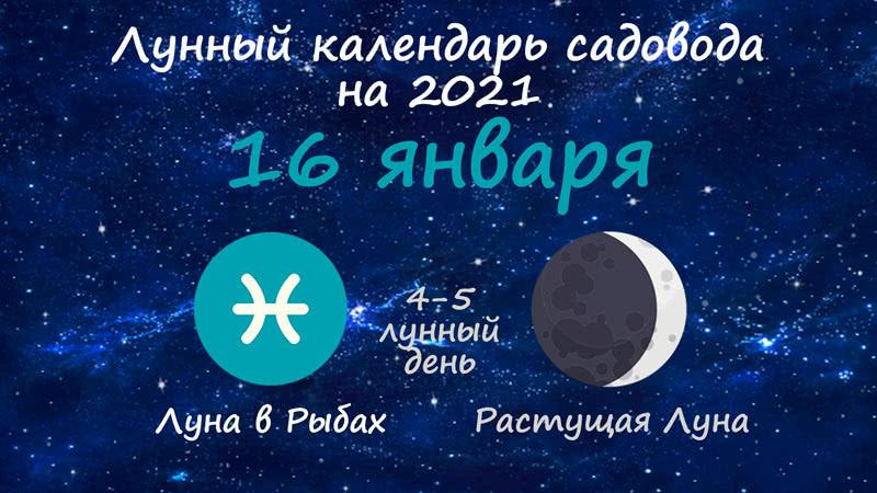 Лунный календарь садовода-огородника на 16 января 2021 года