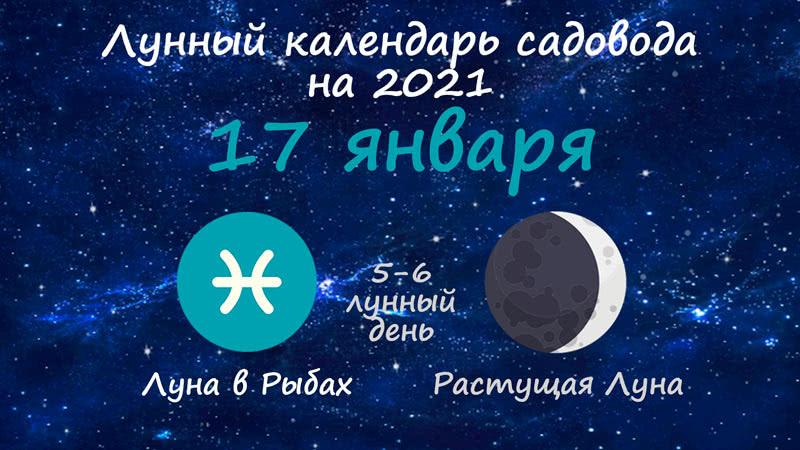 Лунный календарь садовода-огородника на 17 января 2021 года