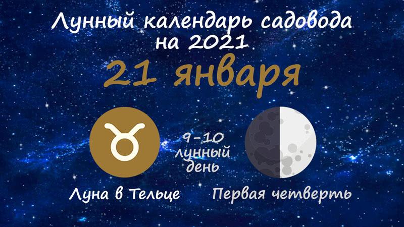 Лунный календарь садовода-огородника на 21 января 2021 года