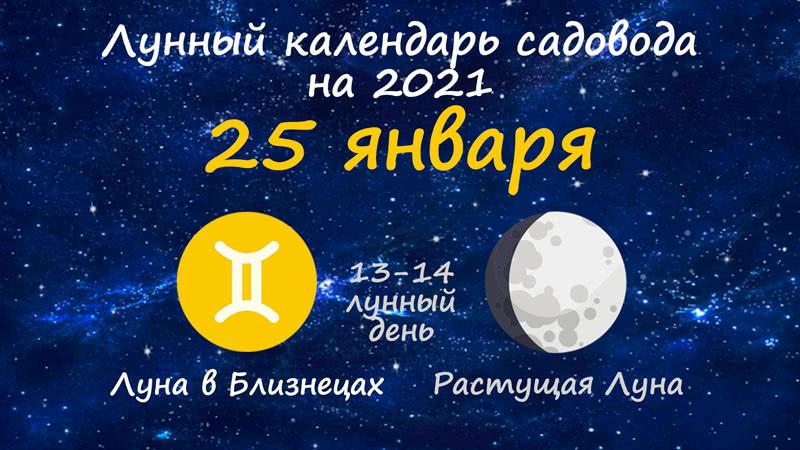 Лунный календарь садовода-огородника на 25 января 2021 года