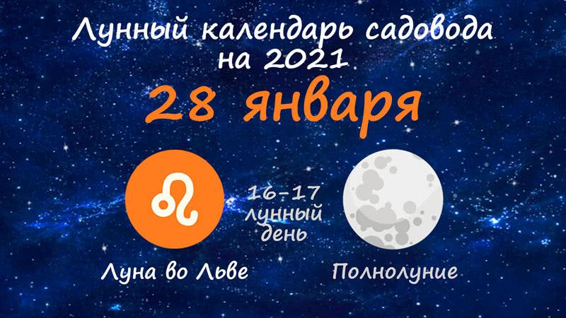 Лунный календарь садовода-огородника на 28 января 2021 года