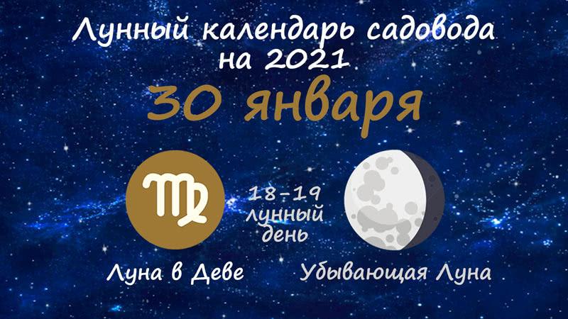 Лунный календарь садовода-огородника на 30 января 2021 года