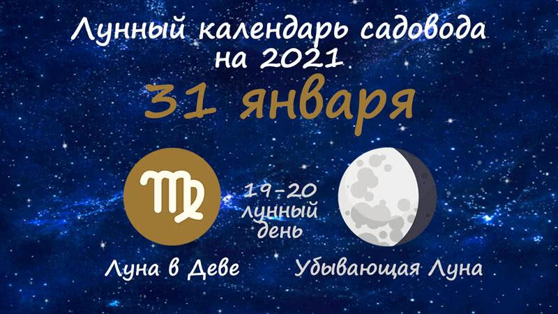 Лунный календарь садовода-огородника на 31 января 2021 года