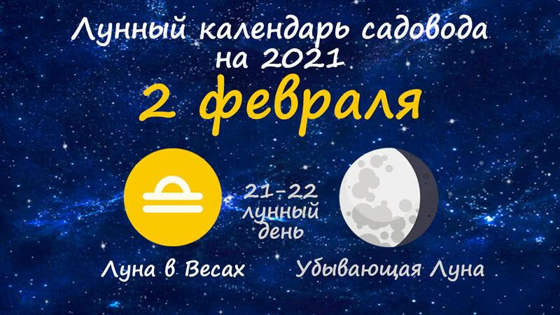 Лунный календарь садовода-огородника на 2 февраля 2021 года