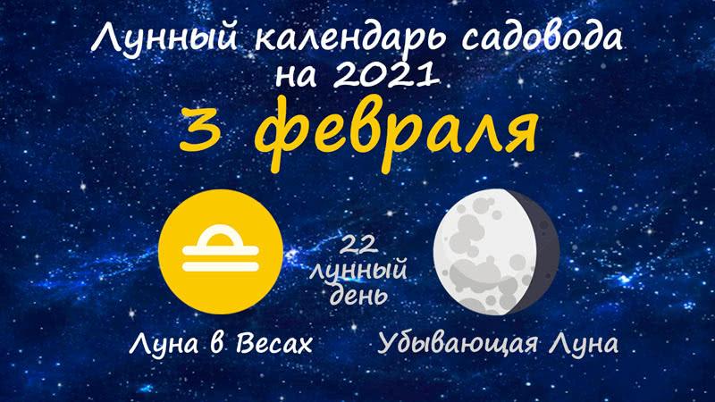 Лунный календарь садовода-огородника на 3 февраля 2021 года
