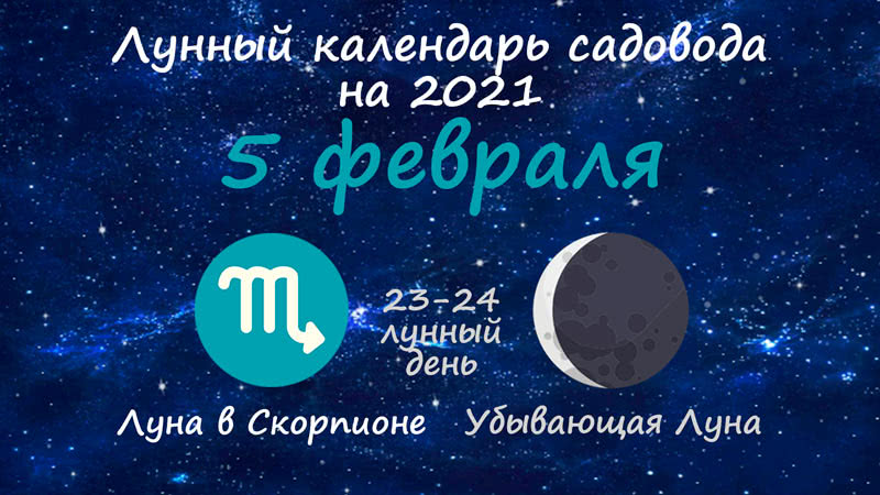 Лунный календарь садовода-огородника на 5 февраля 2021 года