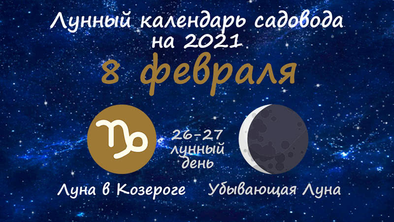 Лунный календарь садовода-огородника на 8 февраля 2021 года