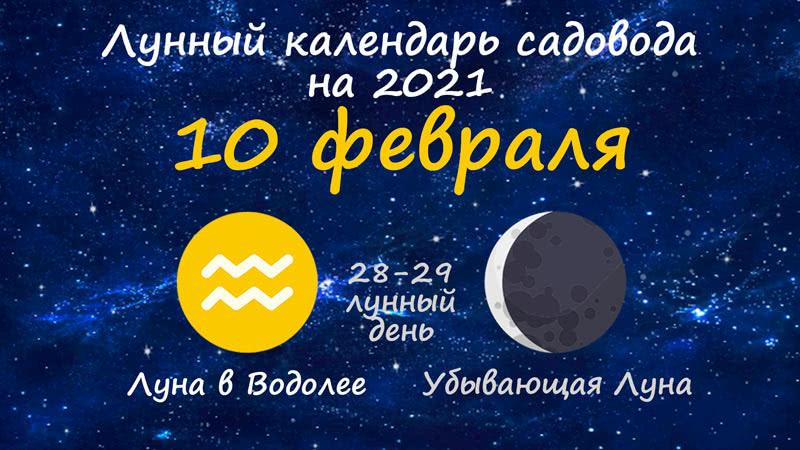 Лунный календарь садовода-огородника на 10 февраля 2021 года
