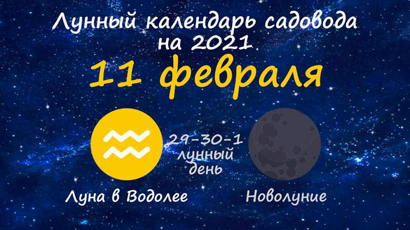 Лунный календарь садовода-огородника на 11 февраля 2021 года