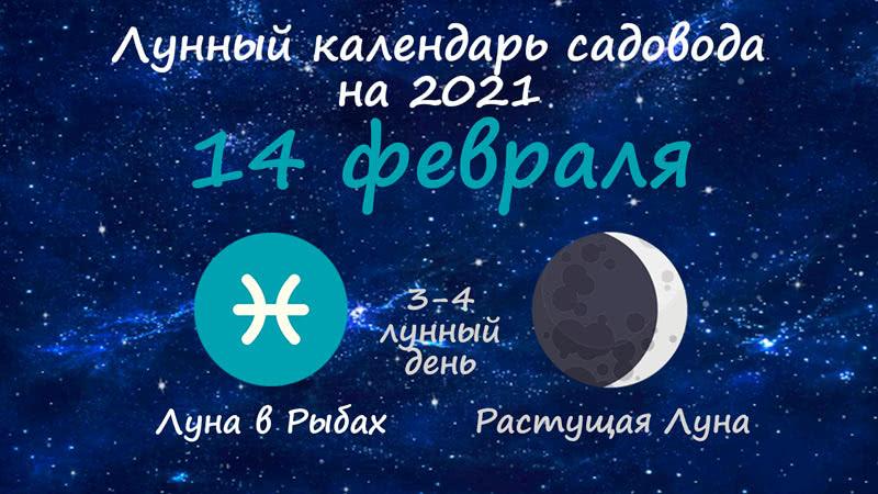 Лунный календарь садовода-огородника на 14 февраля 2021 года