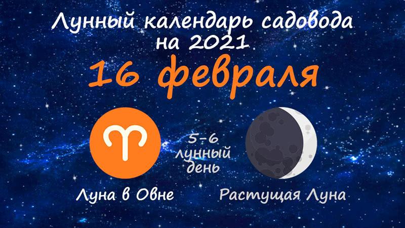 Лунный календарь садовода-огородника на 16 февраля 2021 года