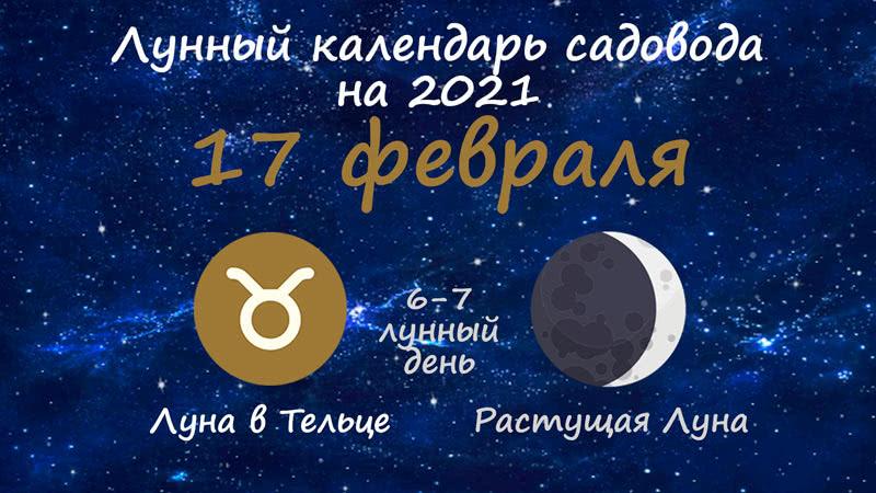 Лунный календарь садовода-огородника на 17 февраля 2021 года