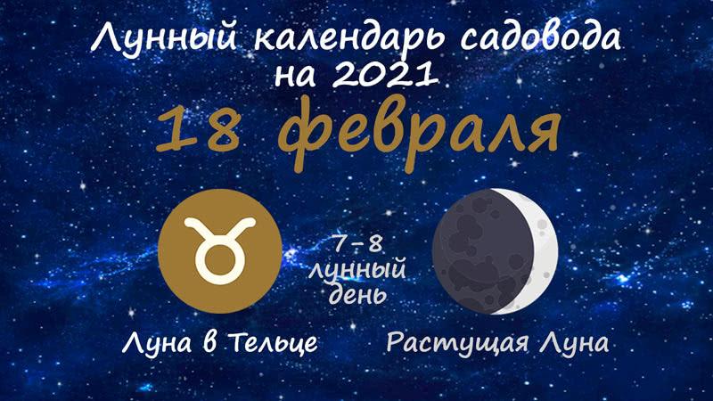 Лунный календарь садовода-огородника на 18 февраля 2021 года