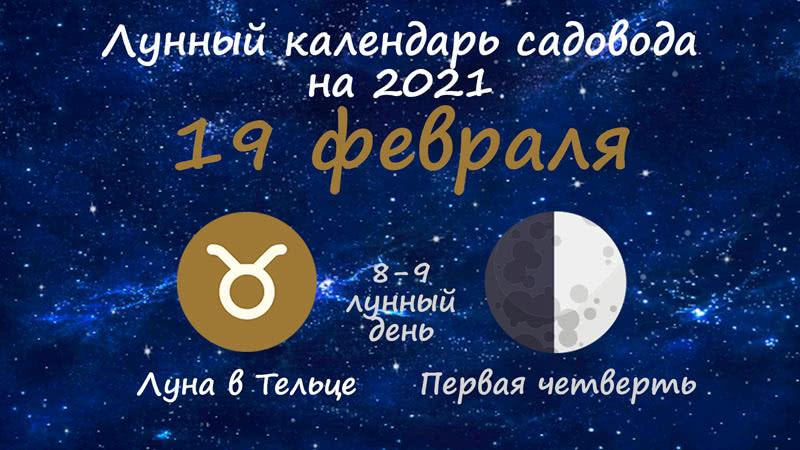 Лунный календарь садовода-огородника на 19 февраля 2021 года