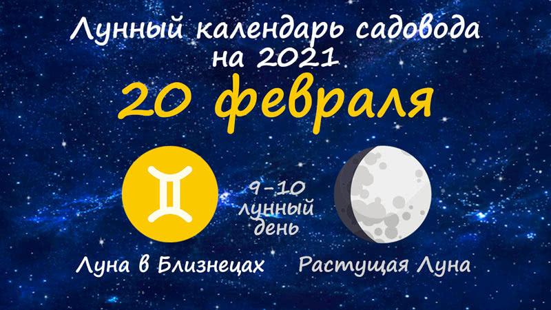 Лунный календарь садовода-огородника на 20 февраля 2021 года