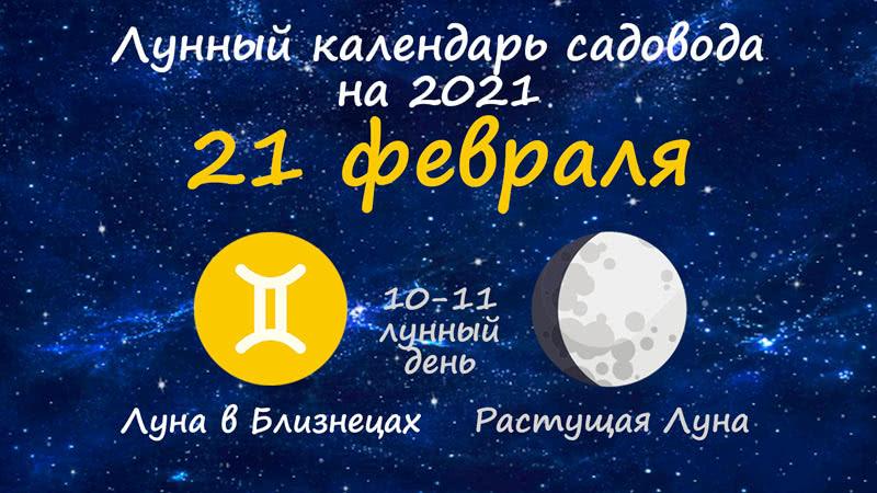 Лунный календарь садовода-огородника на 21 февраля 2021 года