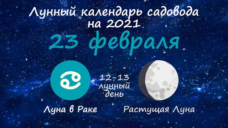 Лунный календарь садовода-огородника на 23 февраля 2021 года