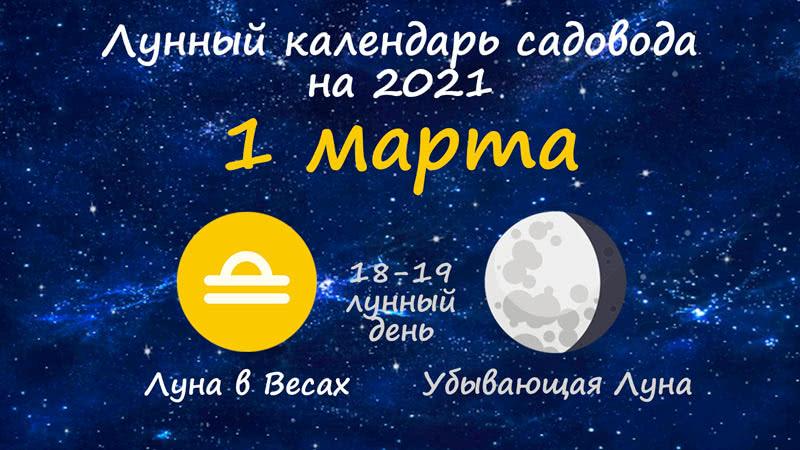 Лунный календарь садовода-огородника на 1 марта 2021 года