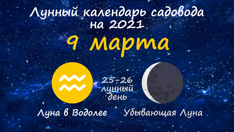 Лунный календарь садовода-огородника на 9 марта 2021 года
