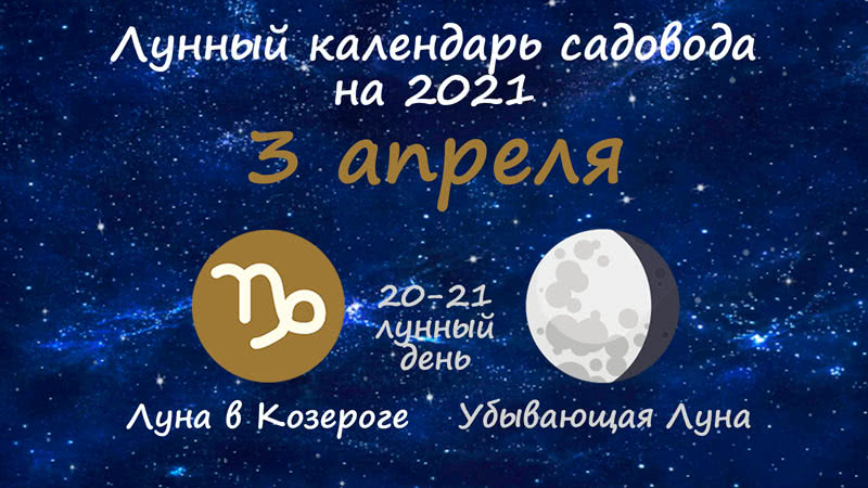 Лунный календарь садовода-огородника на 3 апреля 2021 года
