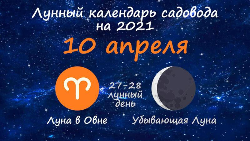 Лунный календарь садовода-огородника на 10 апреля 2021 года