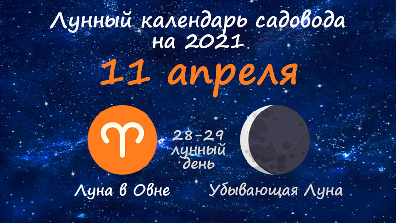 Лунный календарь садовода-огородника на 11 апреля 2021 года