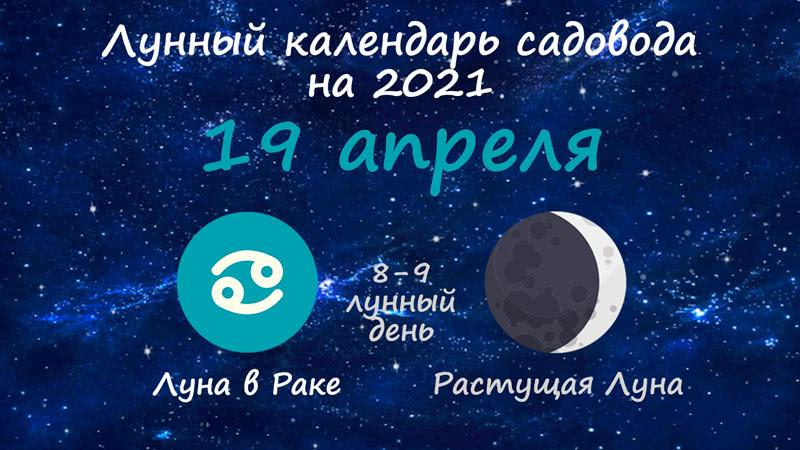 Лунный календарь садовода-огородника на 19 апреля 2021 года