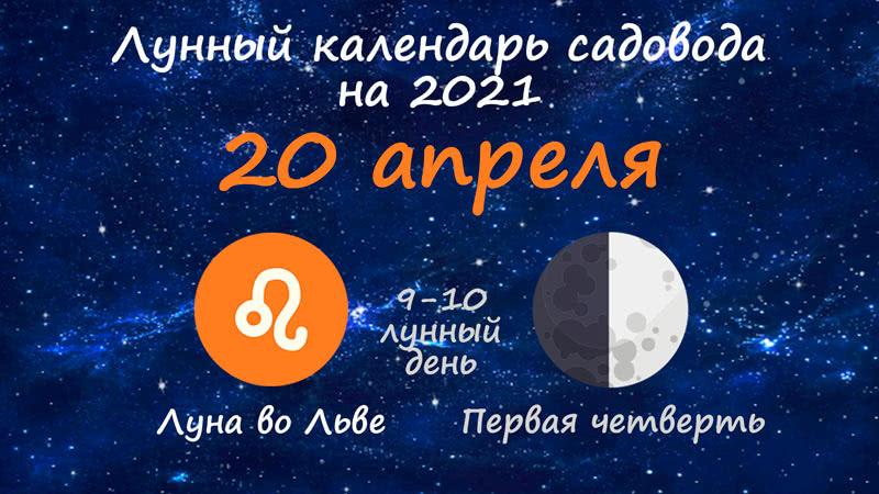Лунный календарь садовода-огородника на 20 апреля 2021 года