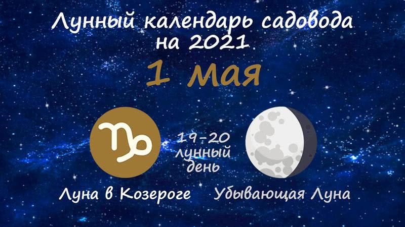 Лунный календарь садовода-огородника на 1 мая 2021 года