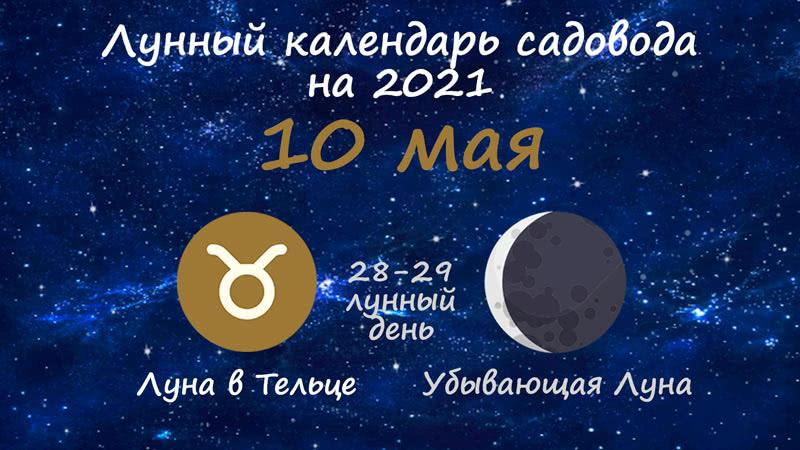 Лунный календарь садовода-огородника на 10 мая 2021 года