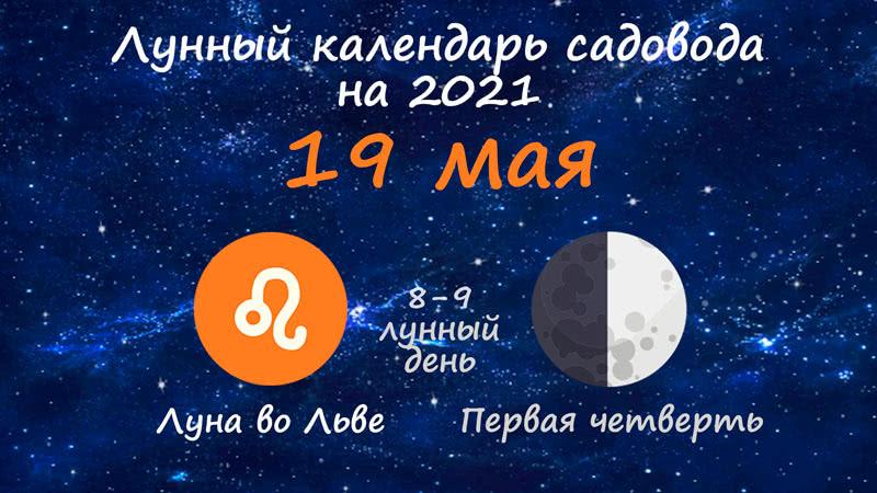 Лунный календарь садовода-огородника на 19 мая 2021 года