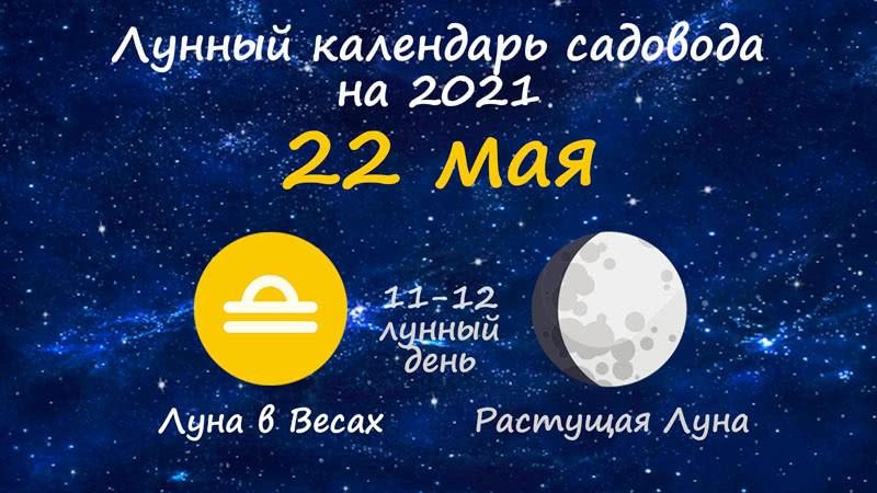 Лунный календарь садовода-огородника на 22 мая 2021 года