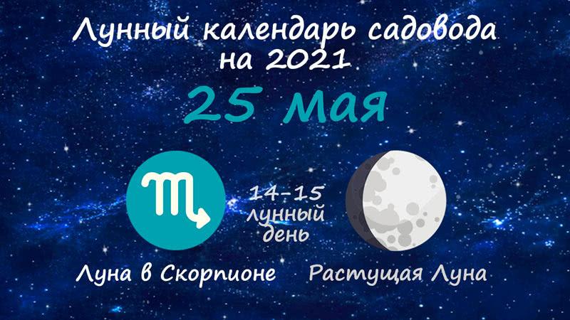 Лунный календарь садовода-огородника на 25 мая 2021 года