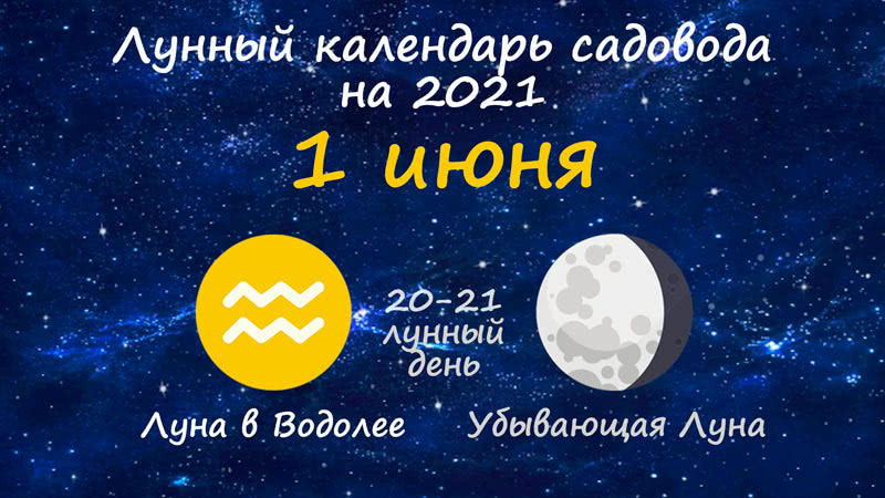 Лунный календарь садовода-огородника на 1 июня 2021 года