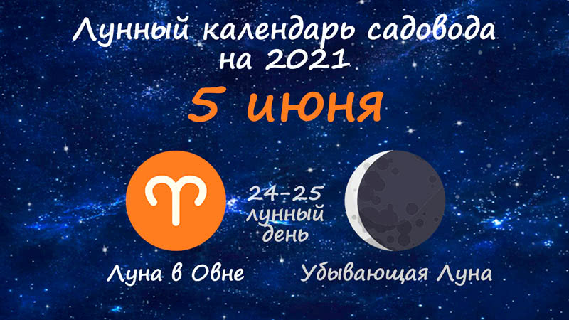 Лунный календарь садовода-огородника на 5 июня 2021 года