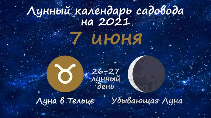 Лунный календарь садовода-огородника на 7 июня 2021 года