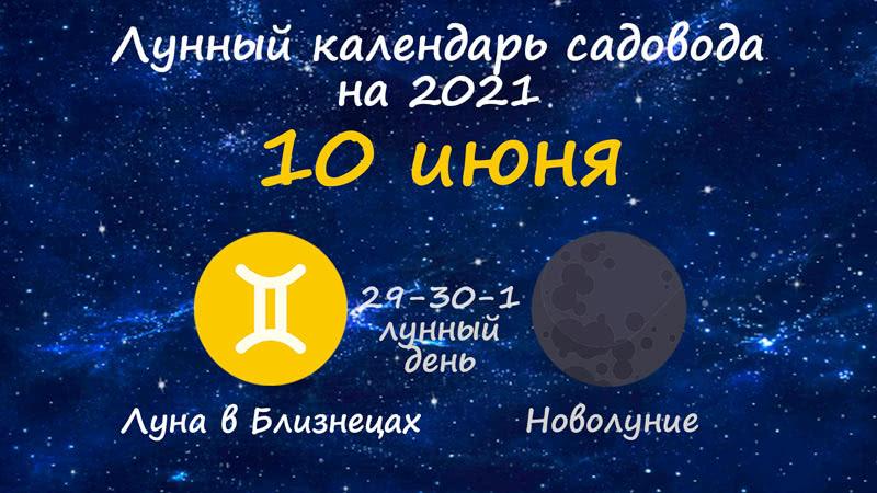 Лунный календарь садовода-огородника на 10 июня 2021 года