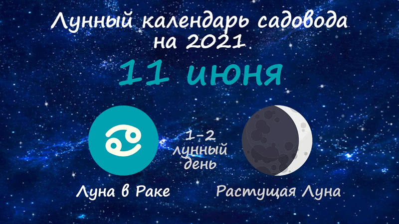 Лунный календарь садовода-огородника на 11 июня 2021 года