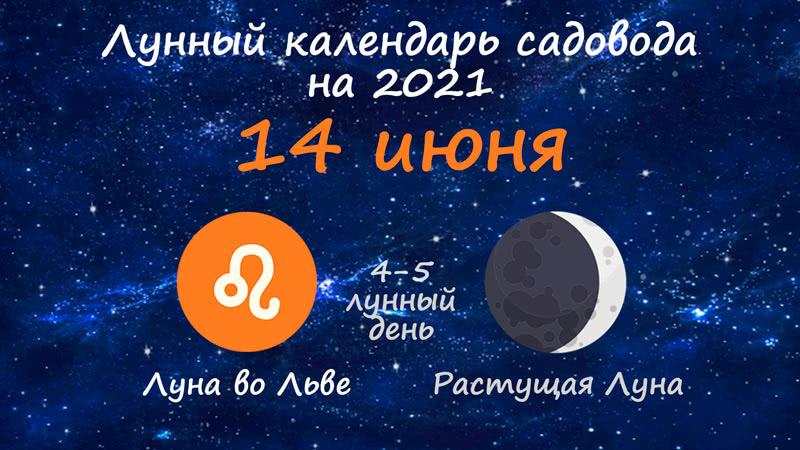 Лунный календарь садовода-огородника на 14 июня 2021 года