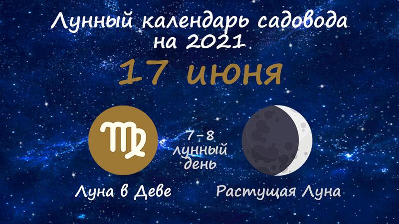 Лунный календарь садовода-огородника на 17 июня 2021 года