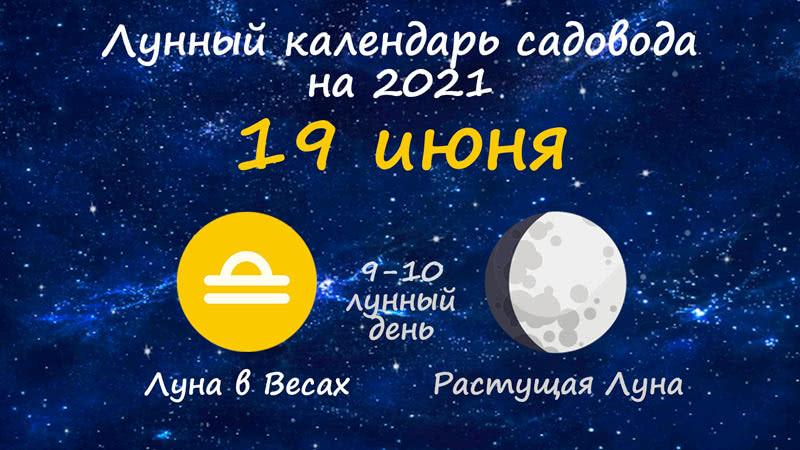 Лунный календарь садовода-огородника на 19 июня 2021 года