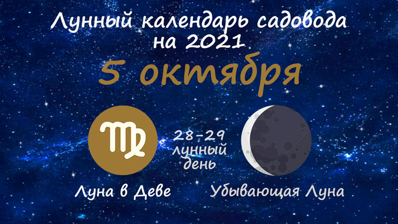 Лунный календарь садовода-огородника на 5 октября 2021 года