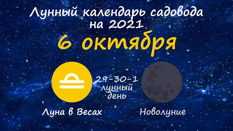 Лунный календарь садовода-огородника на 6 октября 2021 года
