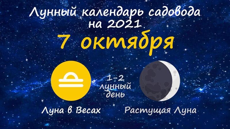 Лунный календарь садовода-огородника на 7 октября 2021 года